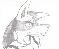 Rugged Lucario by ToaEnemis