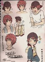 David Sketches by shock777