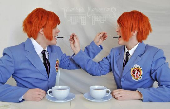 Hitachiin twins - Which one is hikaru game! by VersusMemories