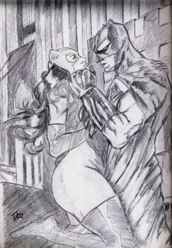 Batman and Catwoman by dtor91