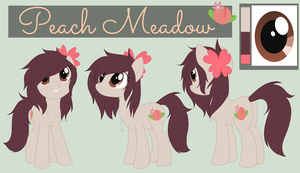 Peach Meadow: Reference 2013 by Pappins