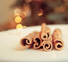 Magic cinnamon by Alessia-Izzo