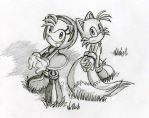 Tails and Amy looking up by Tigerfog
