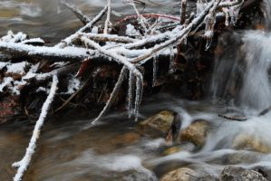 Icy Brook I by Blacksand459