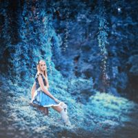 alice by Art-de-Viant