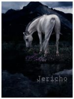 Alone With My Sorrow by Jericho-Designs