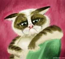 Grumpy cat by peileppe