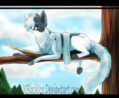 SwiftPaw by XBlackIce