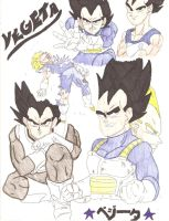 Vegeta Collage by Swamnanthas