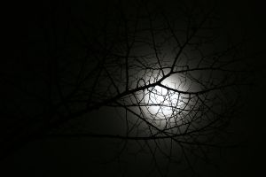 The moon by mkuegler