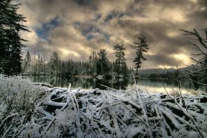 Snowy Beaver Pond HDR by NOS2002