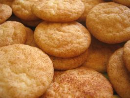 Snickerdoodle Cookies by redglassfire