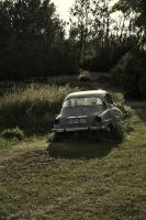 Old car by Panoram