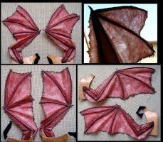 Succubus Wings by Carancerth