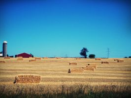 Rural Life by evelynrosalia