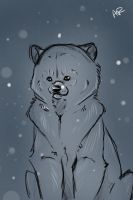 Polar doodle by Andiliion