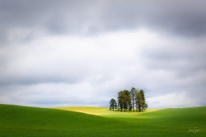 Palouse Oasis by jessespeer
