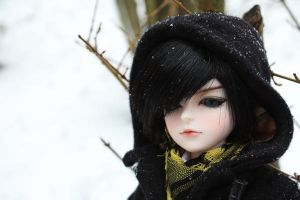 a Winter Day 5 by Liox