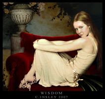 Wisdom by invisibly-touched
