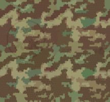 Polygonal Digitized Camo, 1 by madcomputerscientist
