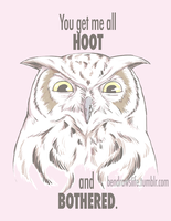 Hoot and Bothered by bensigas