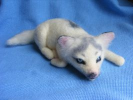 SALE Needle Felted Marble Fox Pup FOR SALE by CVDart1990