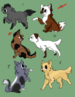 Puppy adopts by AerithsAdopts