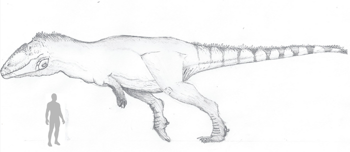 (Male) Tyrannotitan size comparison by The---Other---One