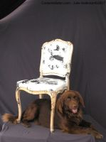 Ernie's Chair for Charity by CostumeSalon