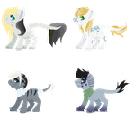 Foal Sheet 1# MilesTailsPrower99 .::OPEN::. by Colliwooble