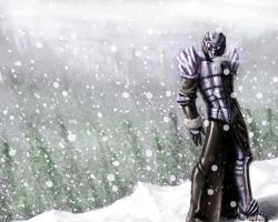 Ice Armor New Version by beonarri