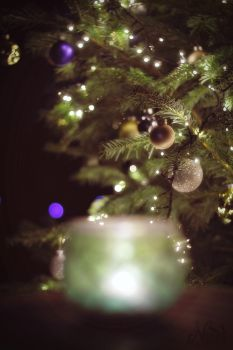 Christmas 5 by nezumi-photography