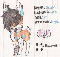 Chayse Ref Sheet by NinjaMuffins1998