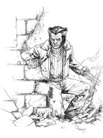Wolverine Days of Future past by TomRaney