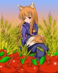 -Spice and Wolf - Horo I by Wanganator