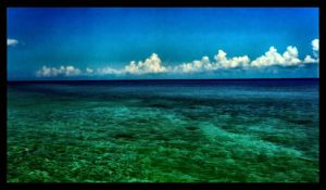 Cozumel Ocean View by mastercylinder