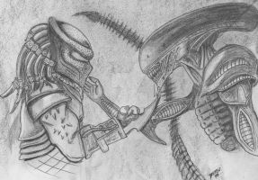 Alien vs.Predator by artphantom
