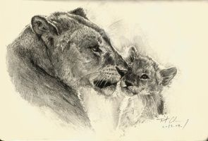 Mother and son -- Lion by cheungchungtat