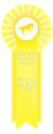TOP BRASS 2012 -2013 by WesternSpice