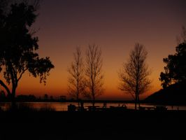 Lake Trees Sunset by CatherineAllison