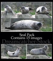 Animals 068 - seal package by Dreamcatcher-stock