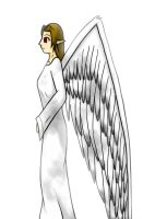 Angel Experiment by Warlock0103