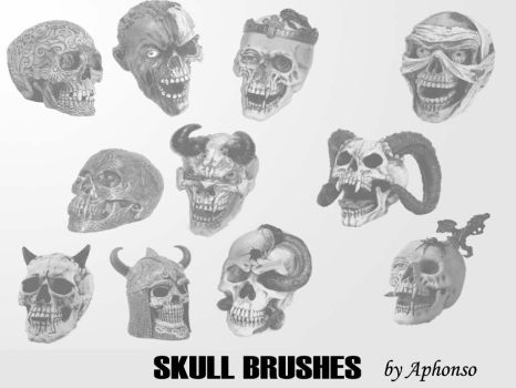 Skull Brushes by Aphonso