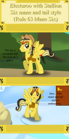 Electuroo different six mane styles (Rule 63) by Electuroo