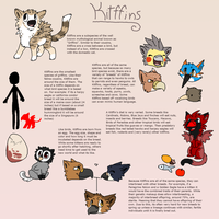 Kitffins Reference Guide by Kiwiis