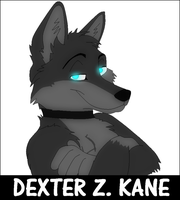 Questions? by DexterTheFox