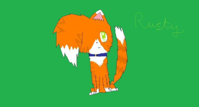 Rusty the kittypet by Derpyhugsyou123