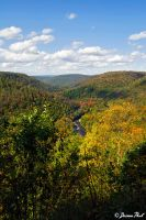 Loyalsock State Forest by daimonpaul