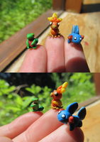 Hoenn Starters Fingertip size by xXShiningstar