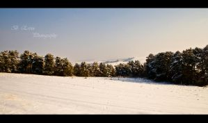 Winter dream by ervin21